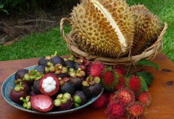 Pamela owoców egzotycznych