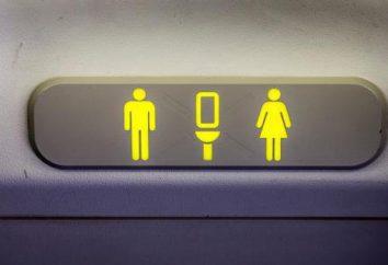 WC in aeromobili: caratteristiche del layout del dispositivo e le regole di funzionamento