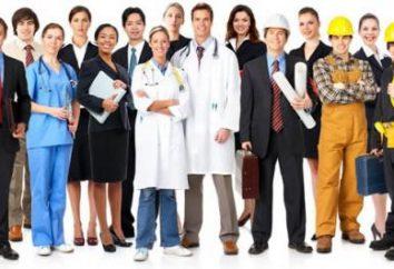 conhecimentos profissionais em resumo: exemplos de formulações