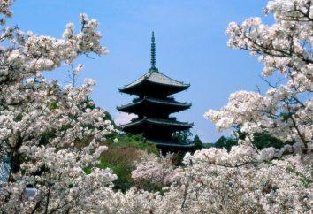 datos interesantes sobre Japón. Japón moderno. Japón montaña