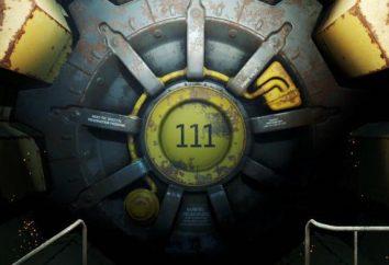 Tutto ciò che riguarda il gioco Fallout 4. Descrizione della trama, vantaggi e satelliti