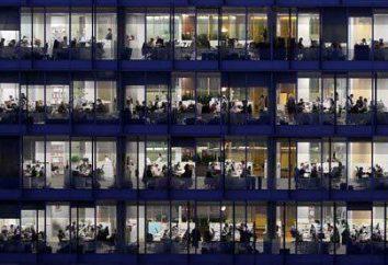 Eine Stichprobe von Informationen über die durchschnittliche Anzahl der Mitarbeiter. Informationen über die durchschnittliche Anzahl der Mitarbeiter: Formular