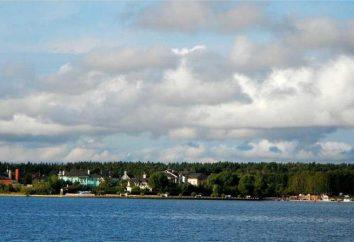 """na każdy gust i budżet wakacje – teren rekreacyjny """"Novoaleksandrovo"""""""