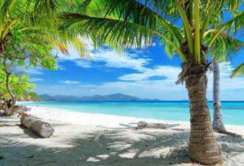 Kata Beach Phuket: lokalizacja, opinie, zdjęcia