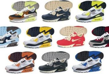 baskets Air Max de Nike – la chaussure idéale pour les sports