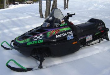 Arctic Cat (skuter): Cechy i opinie