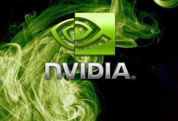 Nvidia GeForce 9600 GT: Dane techniczne i przegląd