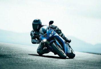 casco de motocross: fotos y comentarios. Niños motocross casco