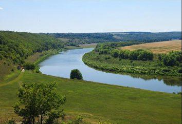 Don (rzeka). Ciekawostką jest jedna z najbardziej majestatycznych rzek Europy