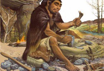 mundo primitivo. La vida del hombre prehistórico