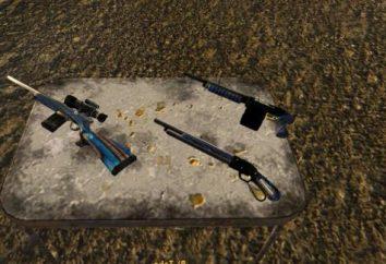 Fallout New Vegas: arma. Fallout New Vegas: trucchi, arma