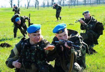 truppe aviotrasportate alta mobilità (VDV) Ucraina