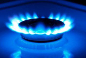 Ekonomitel Gas Gas Saver: opinii klientów. Zasada działania urządzenia