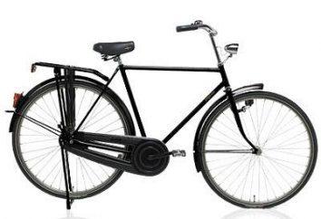 Do pracy na rowerze: sen czy rzeczywistość. Jak wybrać rower dla miasta?