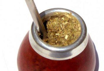 thé Mate: les avantages et les inconvénients. Comment boire du thé?