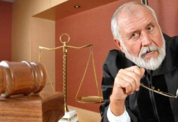 La noción de jurisdicción, tipos de jurisdicción en los casos penales y civiles
