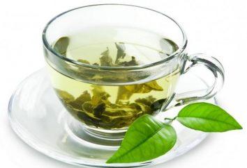 Jak parzyć zielonej herbaty prawo?