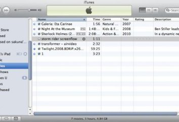 Jak synchronizować iPada z iTunes: instrukcja dla początkujących