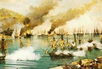 Wojny rosyjsko-tureckie – geneza konfrontacji od połowy XVII do drugiej połowy XIX wieku