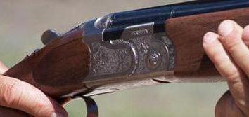 Beretta 686: panoramica e recensioni