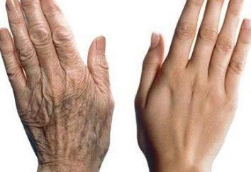 Guides & Beurteilungen – Wie eine Anti-Aging-Handcreme wählen