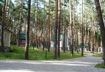 """""""Berendey"""" Park Hotel (Tambov): descanso, los precios y las revisiones de los turistas"""