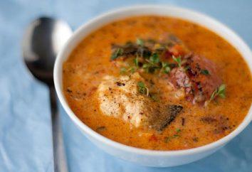 Cocinar la sopa de sardinas en salsa de tomate