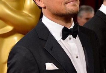 I migliori film Leonardo DiCaprio: elenco. Film con DiCaprio: Descrizione, recensioni, racconti, e recensioni