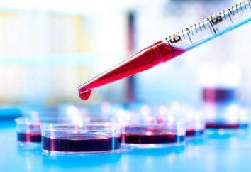 17-idrossiprogesterone nelle donne: principali indicatori e decodifica