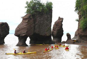 Onde está a Baía de Fundy?