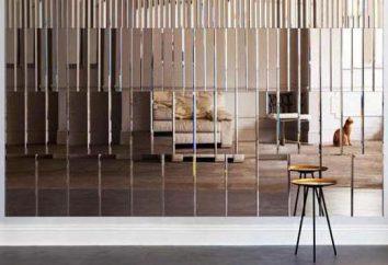 Panel lustro samoprzylepna podstawa: podstawowe cechy i funkcje montażowe