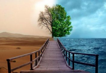 """A decir verdad, si la declaración: """"El agua – es la vida""""? ¿Cuál es el significado de este lema?"""