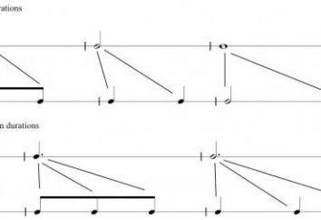Dimensões em música: as designações espécie. A batida na música