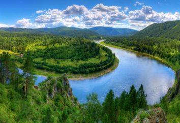 Rzeka Mans Krasnojarsk Territory. Relaks na rzece Mana