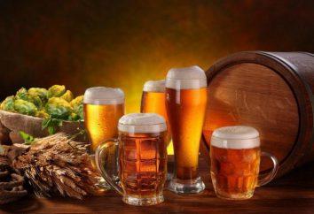 """Französisch Bier: Beschreibung, Marken und Bewertungen. Französisch Bier """"Kronenberg"""""""