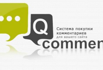 Cambio de QComment Comentarios: retroalimentación. QComment.ru: los ingresos de servicios