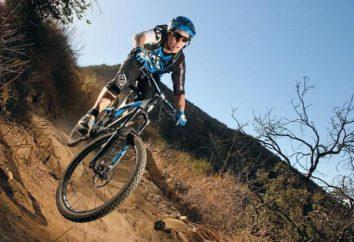 Fahrräder Marin: eine Übersicht über die besten Modelle und Bewertungen