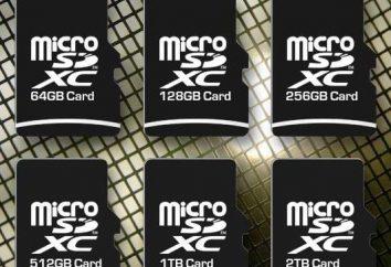 Jak wybrać kartę pamięci do telefonu? Karta SD