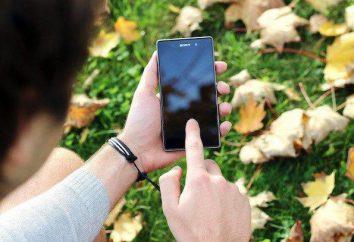 Kalibracja ekranu dotykowego Android: jak skonfigurować ekran dotykowy