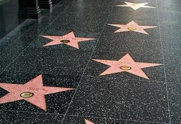 Walk of Fame w Hollywood – gwiazdy skansenie