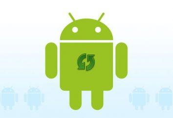 """Isso é interessante: como atualizar o """"Android"""" através do computador?"""