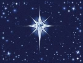 Étoile de Noël: caractéristiques des soins