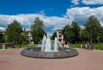 région de Moscou, Kashira – Activités