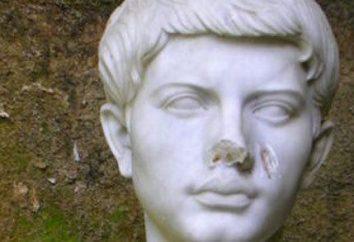 poème Virgil « Enéide »: résumé par chapitre