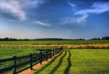 Objets de relations foncières: concepts et types