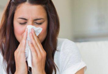 Jak pozbyć się zimno na 1 dzień? Jak pozbyć się z przewlekłym zapaleniem błony śluzowej nosa