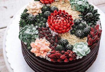 Atemberaubende Kunstfertigkeit: diese Desserts sehen aus wie echte Succulenten
