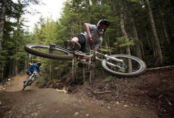 Vélos tour gratuit: une vue d'ensemble, types, caractéristiques et commentaires