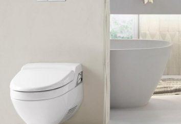 Zawieszony WC: modele, rozmiary i instalacji. Naprawa zawiasach toaletę