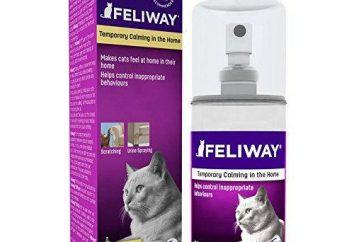 """Feliway Spray """"®"""" dla kotów: Podręcznik i opinie"""